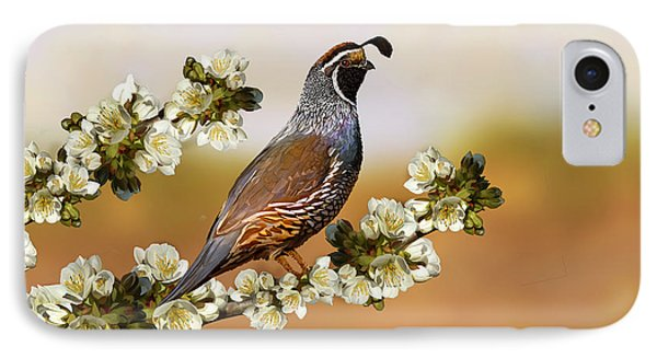 Quail In Cherry Tree Phone Case by Laird Roberts