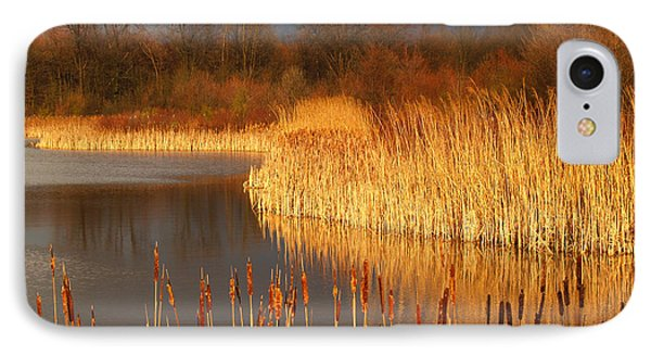 Quakertown Marsh Before Spring Storm IPhone Case