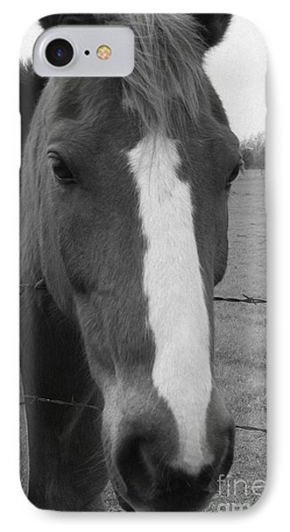 Quarter Horse IPhone Case by Jerry Bunger