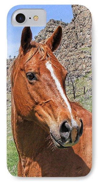 Quarter Horse Portrait Montana Phone Case by Jennie Marie Schell