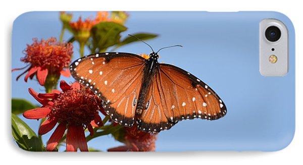 Queen Butterfly IPhone Case by Debra Martz