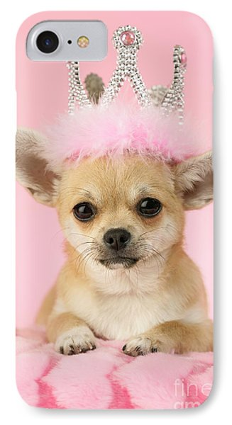 Queen Chihuahua IPhone Case by Greg Cuddiford