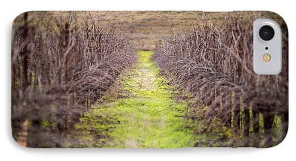 Quiet Vineyard IPhone Case