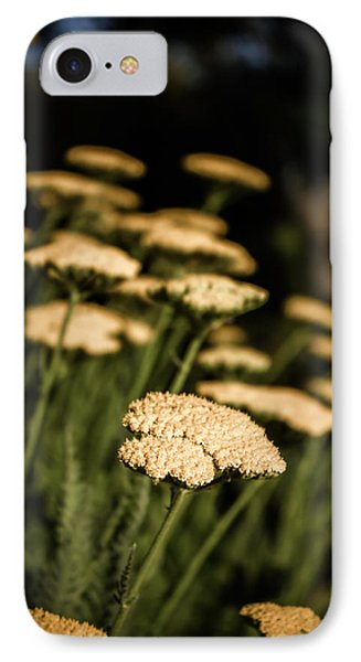 Quivering Yarrow IPhone Case
