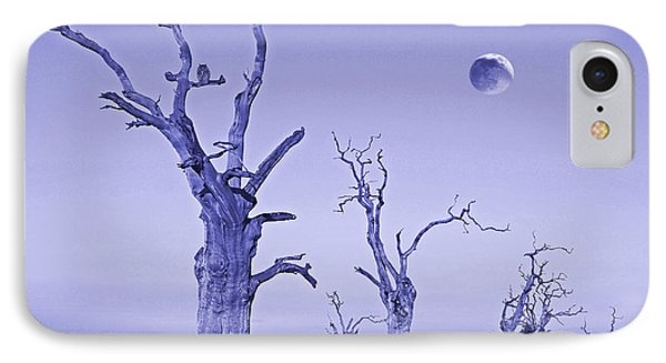 R I P IPhone Case by Gill Billington