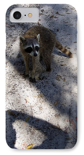 Raccoon 0311 IPhone Case by Chris Mercer