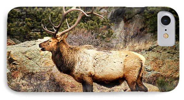 Rack Of Elk IPhone Case