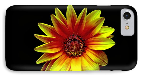 IPhone Case featuring the photograph Radiance by Marwan Khoury