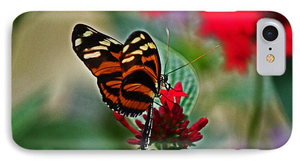 Radiant Butterfly IPhone Case