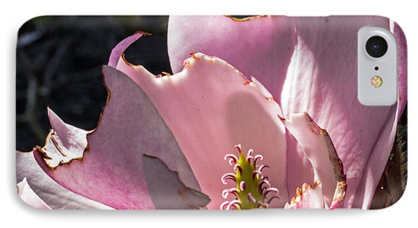 Ragged Magnolia Phone Case by Kate Brown