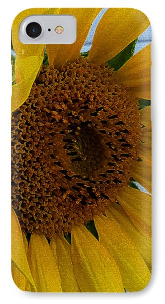 Rahab's Sunflower IPhone Case