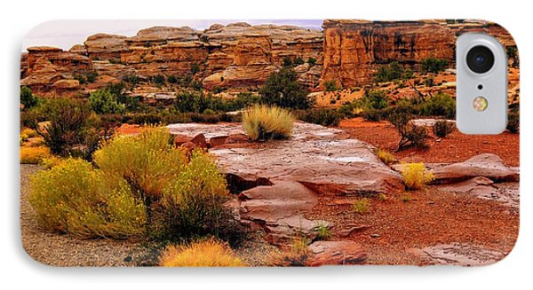 Rain At The Needles District 2 Phone Case by Marty Koch