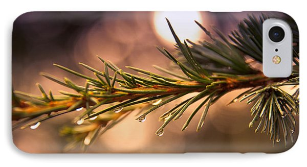 Rain Droplets On Pine Needles Phone Case by Loriental Photography