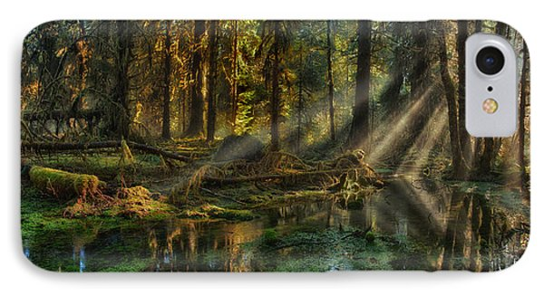 Rain Forest Sunbeams IPhone Case by Mary Jo Allen