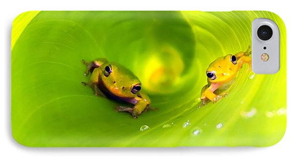 Rain Frogs Peeking Out IPhone Case by Myrna Bradshaw