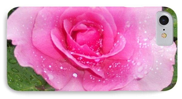 Rain Kissed Rose IPhone Case by Catherine Gagne