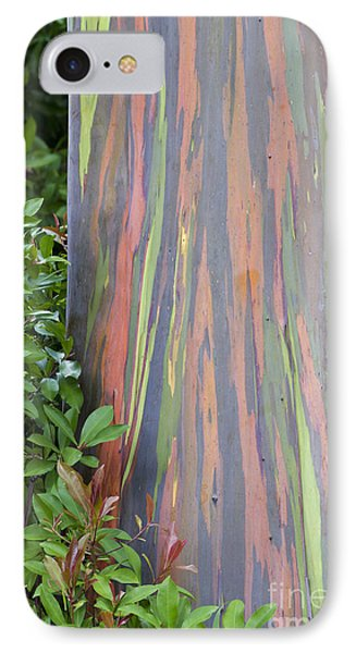 IPhone Case featuring the photograph Rainbow Eucalyptus by Bryan Keil