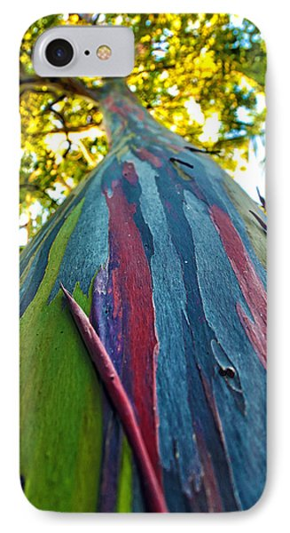 Rainbow Eucalyptus IPhone Case by Mitch Cat