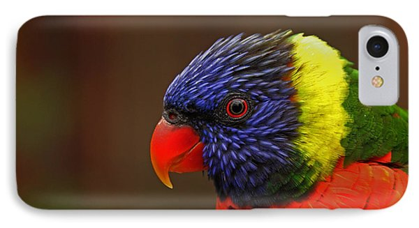 IPhone Case featuring the photograph Rainbow Lorikeet by Andy Lawless