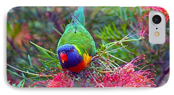 Rainbow Lorikeet I IPhone Case by Cassandra Buckley