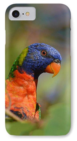 Rainbow Lorikeet Parrot  IPhone Case