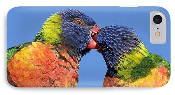 Rainbow Lorikeets IPhone Case by Steven Ralser