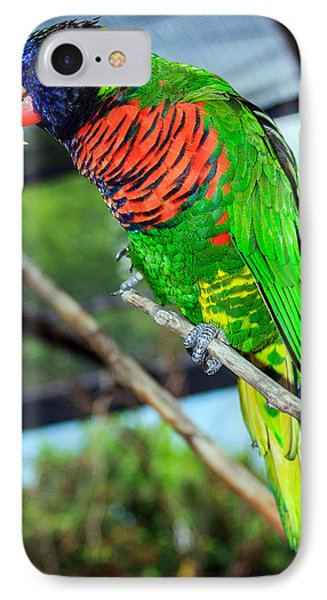 IPhone Case featuring the photograph Rainbow Lory by Sennie Pierson