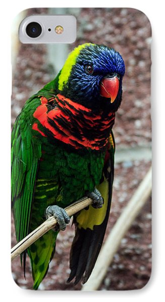 IPhone Case featuring the photograph Rainbow Lory Too by Sennie Pierson