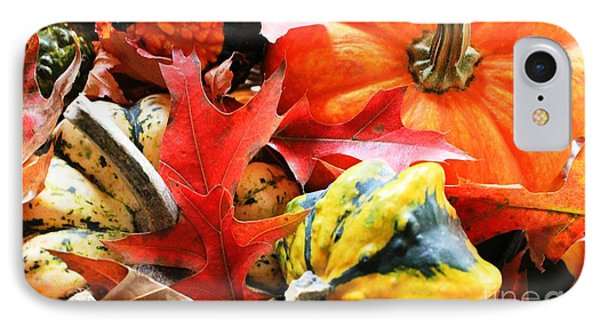 Rainbow Of Autumn Colors IPhone Case by Judy Palkimas