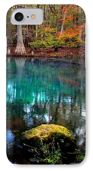 Rainbow Of Colors Manatee Springs1 IPhone Case