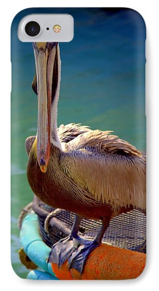 Rainbow Pelican Phone Case by Karen Wiles