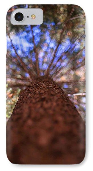 Rainbow Pine IPhone Case by Aaron Aldrich