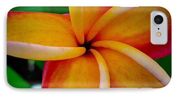 Rainbow Plumeria IPhone Case by TK Goforth