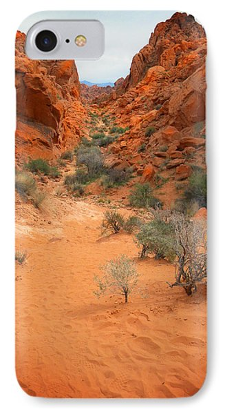 Rainbow Vista Trail Valley Of Fire Phone Case by Frank Wilson