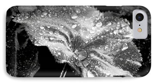 Raindrop Covered Leaf IPhone Case