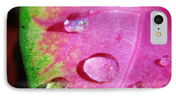 Raindrop On The Leaf IPhone Case by D Hackett
