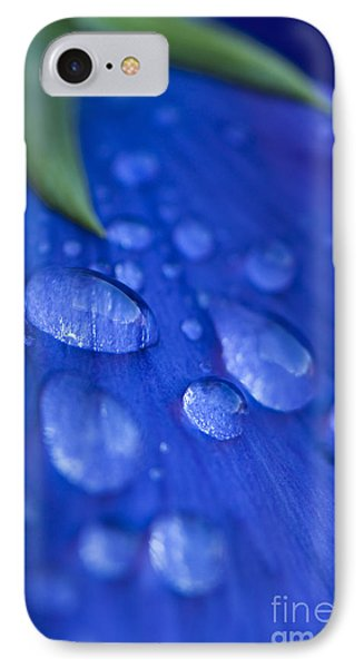 Raindrop Pansy Phone Case by Anne Gilbert