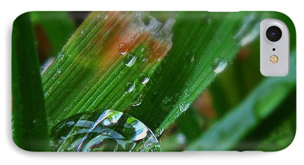 IPhone Case featuring the photograph Raindrop In The Grass by Suzy Piatt