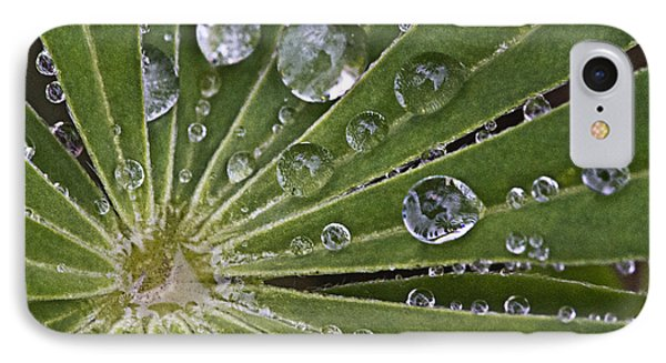 Raindrops On Lupin Leaf Phone Case by Heiko Koehrer-Wagner