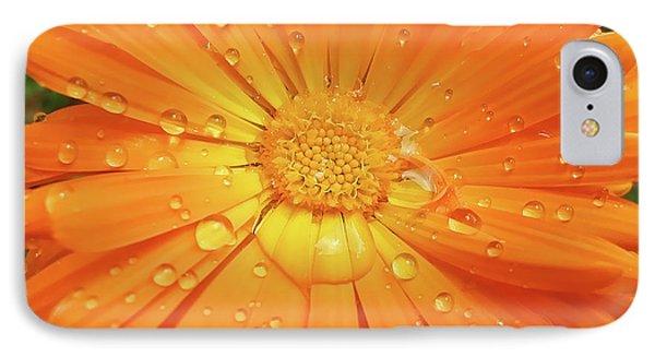 Raindrops On Orange Daisy Flower Phone Case by Jennie Marie Schell