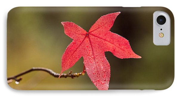 Raindrops On Red Fall Leaf Phone Case by Michelle Wrighton