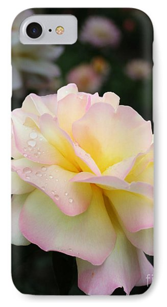 IPhone Case featuring the photograph Raindrops On Rose Petals by Barbara McMahon