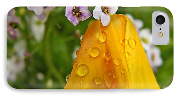 Rained Upon Phone Case by Chris Berry