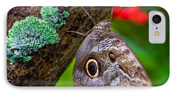 Rainforest Butterfly IPhone Case by Mark Andrew Thomas