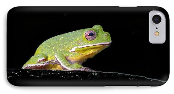 IPhone Case featuring the photograph Rainfrog Portrait by Myrna Bradshaw