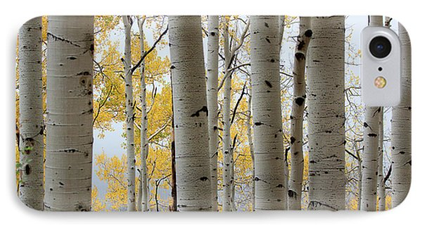 Rainy Day Aspen  IPhone Case by Jim Garrison