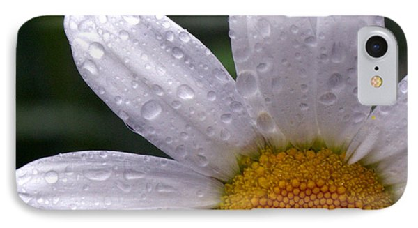 Rainy Day Daisy IPhone Case