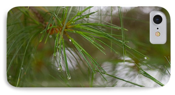 IPhone Case featuring the photograph Rainy Day Pines by Haren Images- Kriss Haren