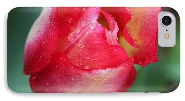 Rainy Day Series - Pink And Yellow Tulip IPhone Case by Suzanne Gaff