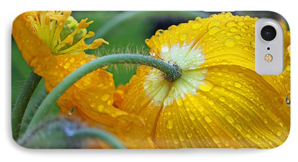 Rainy Day Series - Yellow Poppies IPhone Case by Suzanne Gaff